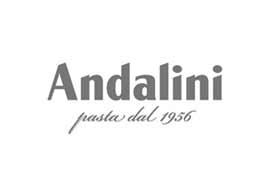 andalini-logo