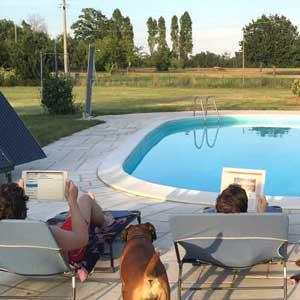 Buone vacanze dal team Fenice Pool