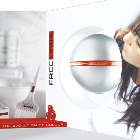 Maestri Elvares - FreeLimix: expo magnetic