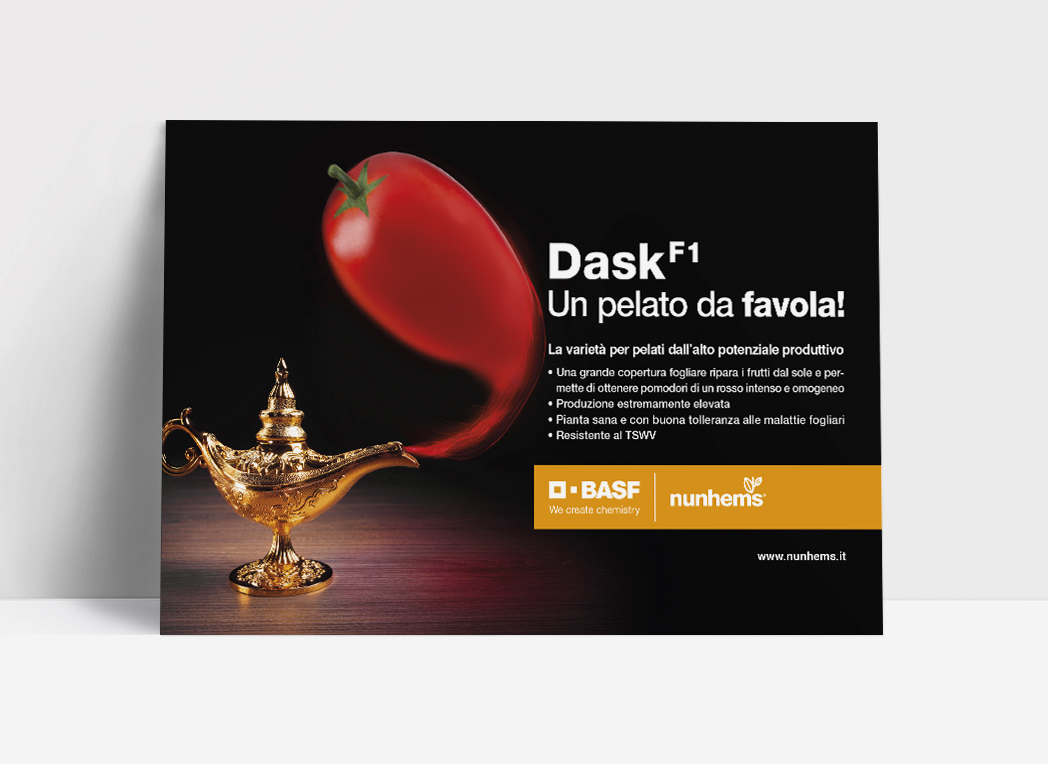 Dask, un pelato da favola